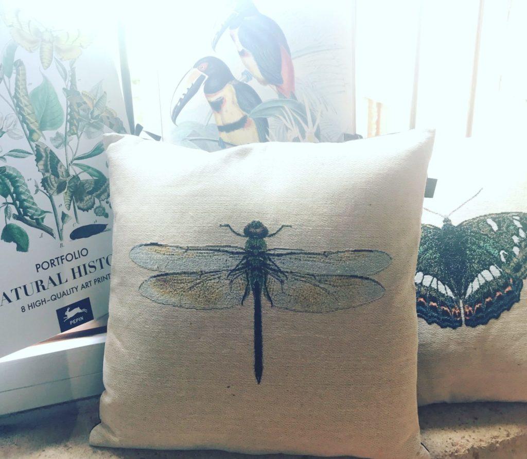 libellule, papillon, bestiaire : la nature entrent dans la maison